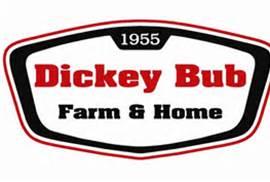 Dicky-Bub